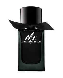 Burberry-Mr.-Burberry-Man-Eau-de-Parfum-100-ML.jpg